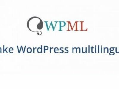 WPML All Import Plugin