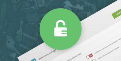 Aitthemes Permissions Manager Plugin