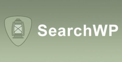 SearchWP WPML Integration Add On