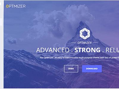 Optimizer PRO Multi Functional WP Theme