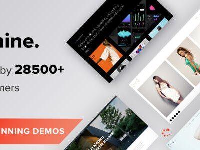 Oshine Multipurpose Creative WordPress Theme