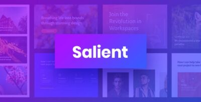 Salient Responsive Multi Purpose Theme