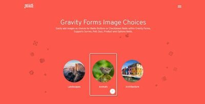 Gravity Forms Image Choices