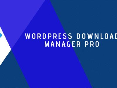 Wordpress Download Manager Pro Plugin