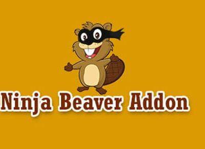 Ninja Beaver Addon Beaver Builder Plugin