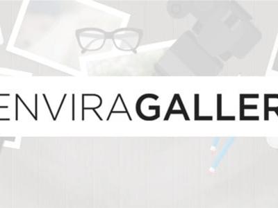 Envira Gallery Fullscreen Add On
