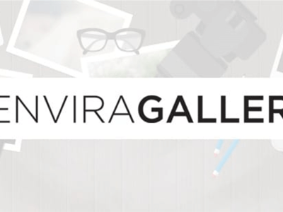 Envira Gallery Lightroom Add On
