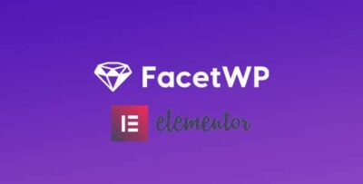 FacetWP Elementor Integration Add On
