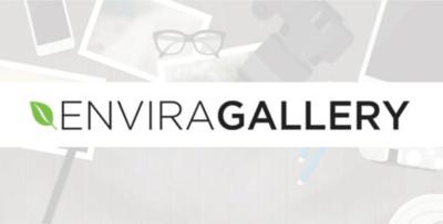 Envira Gallery Defaults Add On