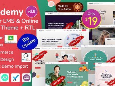 ECademy Elementor LMS & Online Courses Theme